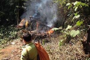 Đến hiện trường kiểm tra khai thác gỗ lậu, cán bộ kiểm lâm bị tạt xăng đốt