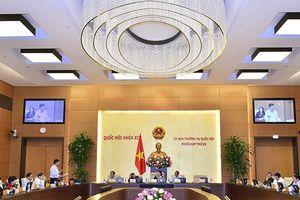Không tường thuật trực tiếp Quốc hội thảo luận Luật Phòng, chống tham nhũng