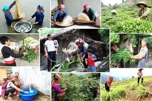 Việt Nam có nhiều tiến bộ giảm nghèo đa chiều