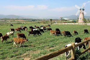 F&N Dairy lại đăng ký mua hơn 17,4 triệu cổ phiếu Vinamilk