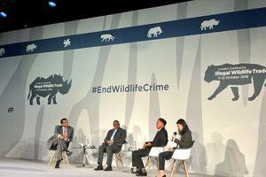 Buôn bán trái pháp luật động vật hoang dã là tội phạm nghiêm trọng