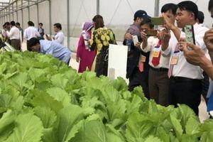 Vinh danh nông dân Việt Nam xuất sắc năm 2018