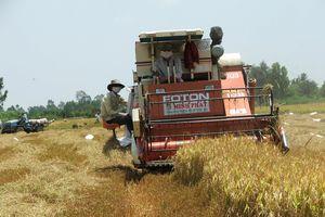 Động lực tăng trưởng kinh tế từ ngành nông nghiệp