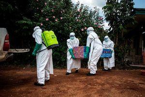 Dịch cúm Ebola bùng phát, WHO họp khẩn cấp
