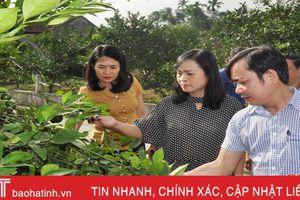 Hương Khê cần sáng tạo, phát huy thế mạnh trong xây dựng NTM
