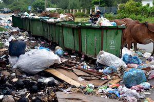 Hàng tấn rác thải bủa vây cửa ngõ phía Nam thành phố Quảng Ngãi