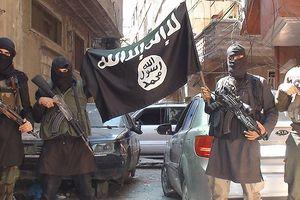 Lầu Năm Góc: Các tay súng IS nước ngoài vẫn đổ về chiến trường Syria