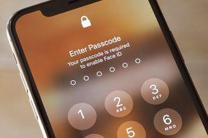 Xuất hiện lỗ hổng nguy hiểm trên iOS 12