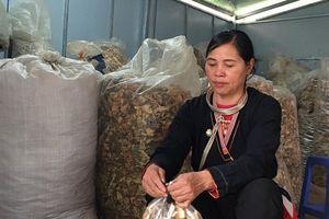 Lương y Triệu Thị Hòa tiết lộ bài thuốc quý chữa đau nhức xương khớp