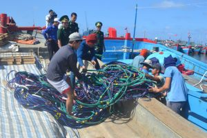 Quảng Ngãi: Tàu cá dùng súng điện khai thác hải sản trái phép