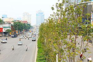 Thời tiết hôm nay: Hà Nội trở lạnh, nhiệt độ thấp nhất là 20 độ C