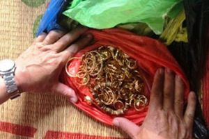 Hành tung bí ẩn của nhóm đối tượng trộm 200 cây vàng ở Ninh Bình