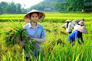 Báo chí Phụ nữ Việt Nam xưa và nay