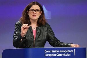 Mỹ chỉ trích EU khiến đàm phán thương mại đình trệ