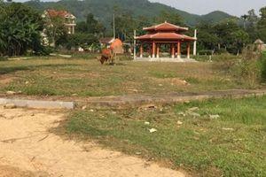 Nghệ An: Khu di tích Truông Bồn xuống cấp, trâu bò vào gặm cỏ