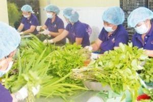 Đẩy mạnh xây dựng chuỗi thực phẩm sạch