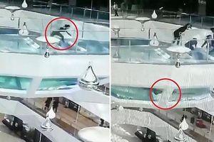Cô gái ngã xuống bể đầy cá mập ở Trung Quốc