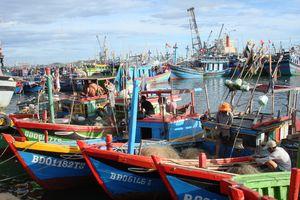 Bình Định: Kiên quyết xử lý tàu cá vi phạm