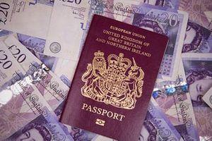 OECD công bố danh sách 21 quốc gia là 'thiên đường trốn thuế'