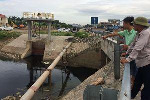 Ninh Bình: Xử lý kiên quyết đối với vi phạm pháp luật về môi trường