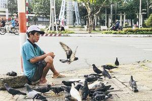 Những cánh chim Hòa Bình