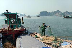 Hải đội 2 Biên phòng: Tích cực đấu tranh, ngăn chặn khai thác thủy sản trái phép
