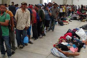 Tổng thống Mỹ Donald Trump cảnh báo Mexico, dọa đóng cửa biên giới