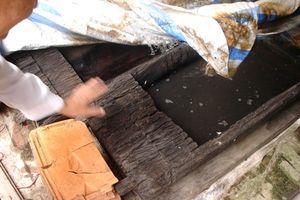 Sửng sốt với nghĩa địa mộ thân cây gỗ lim nguyên vẹn từ 3.000 năm trước ở Hưng Yên