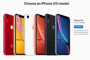 iPhone XR đã cho đặt trước trên website Apple