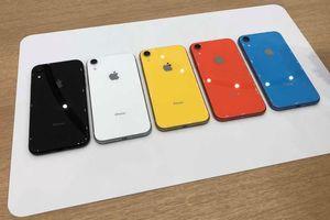 iPhone XR mở bán, bản màu vàng và coral gây sốt