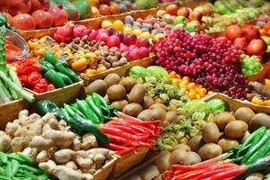 Lâm Đồng: Thực hiện Dự án truy xuất nguồn gốc nông sản