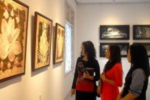 Triển lãm mỹ thuật 'Thảo mộc' các nữ họa sĩ ba miền