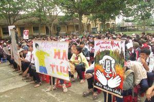 Rà soát công tác giáo dục phòng chống ma túy thâm nhập học đường