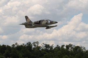 Máy bay huấn luyện L-39 rơi ở Nga