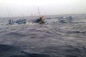 43 ngư dân trên chiếc tàu chìm ngoài biển vào đất liền an toàn