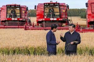 Người Trung Quốc bắt đầu thắt chặt chi tiêu vì chiến tranh thương mại