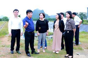 HĐND tỉnh giám sát về môi trường tại Nhà máy chế biến tinh bột sắn ở Anh Sơn