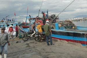 Đà Nẵng: Dừng thực hiện dự án đầu tư xây dựng tuyến luồng vào khu bến cảng Thọ Quang