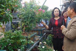 Phó Bí thư Thường trực Thành ủy kiểm tra Chương trình 02 tại Mê Linh