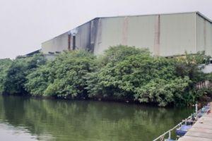 Công ty HD Wood Việt Nam vô tư hoạt động khi chưa có kế hoạch bảo vệ môi trường