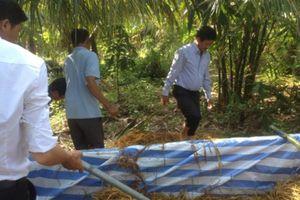 Sóc Trăng: Tập huấn kỹ thuật trồng nấm rơm tại nhà