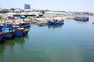 Bến cảng Thọ Quang sẽ dừng hoạt động xây dựng tuyến luồng