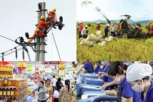 Kinh tế Việt Nam đạt nhiều kết quả tích cực trong ổn định kinh tế vĩ mô