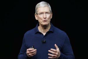 CEO Apple muốn Bloomberg gỡ bài viết chip gián điệp hạt gạo Trung Quốc