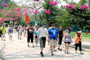 40% khách du lịch quốc tế đã quay lại Việt Nam