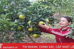 Phụ nữ Hà Tĩnh làm chủ kinh tế, thay đổi vị thế trong gia đình và xã hội