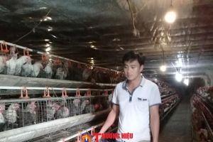 Chàng trai 8X nuôi gà Ai Cập đẻ trứng, thu lãi tiền tỷ