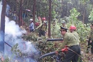 330 người tham gia diễn tập chữa cháy rừng tại huyện Ba Vì