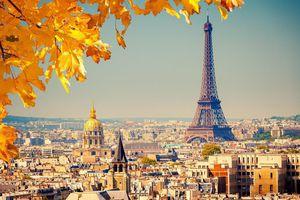 60 nhà lãnh đạo thế giới sẽ tham dự Diễn đàn Paris về Hòa Bình