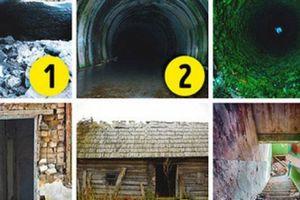 Quiz: Đâu là bức ảnh khiến bạn thấy sợ hãi nhất?